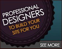Build111 professional design